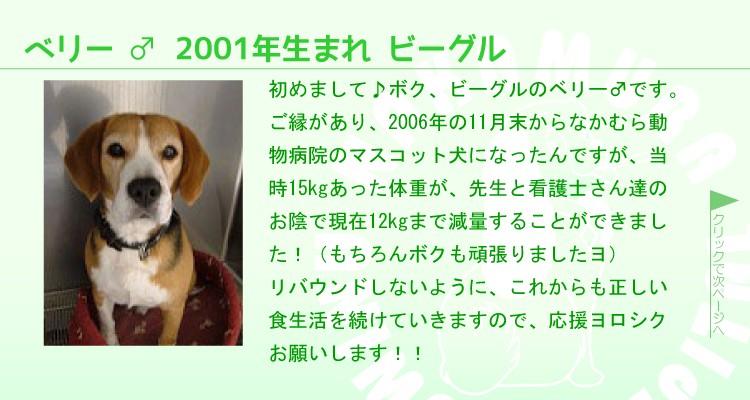staff0006