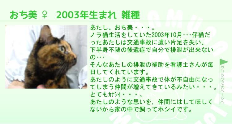 staff0007